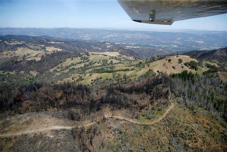 California burn scar